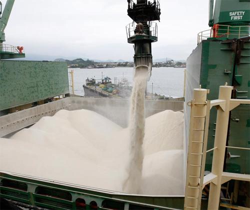 sugar wholesale price