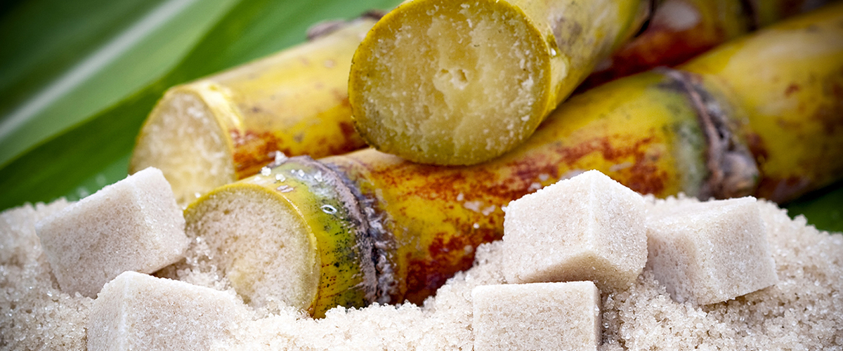 natural sugar suppliers online